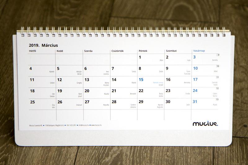 Asztali naptár, 12+1 lapos (fotó nélkül)