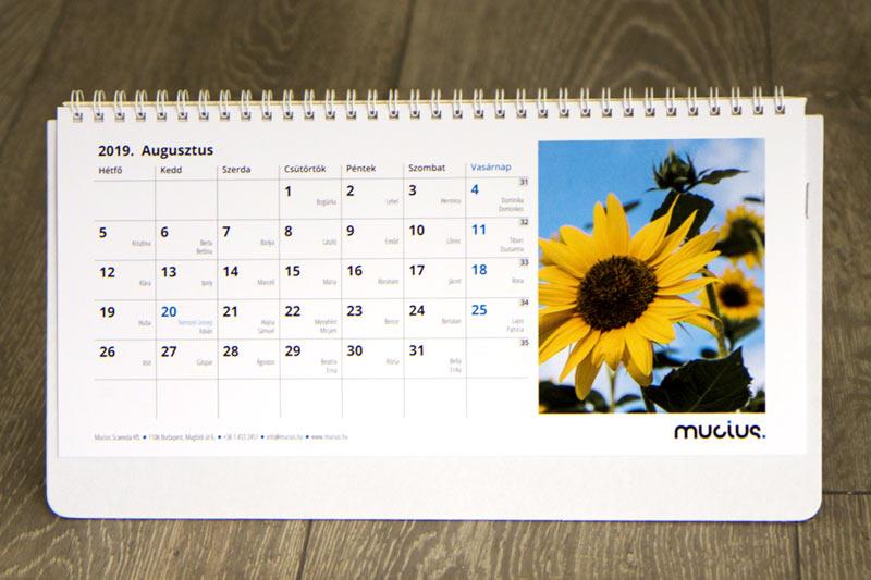 Asztali naptár, 12+1 lapos (fotóval)